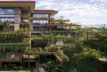 10 ngôi nhà đẹp về thiết kế và sáng tạo ở Mỹ